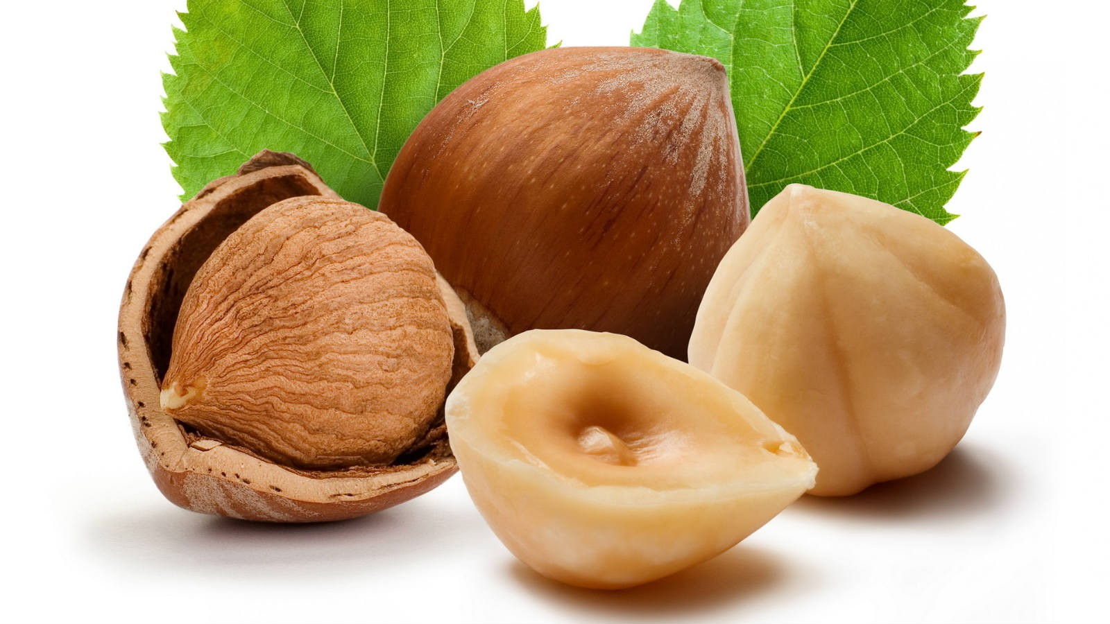 Photo Credit: http://www.bestherbalhealth.com/wp-content/uploads/2014/01/hazelnuts1.jpg